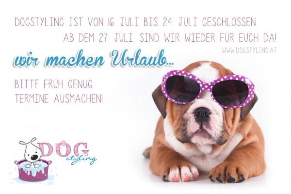 dogstyling_urlaub_2015